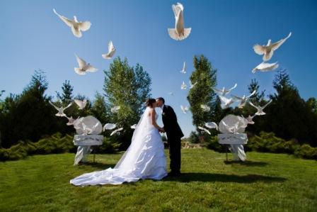 wedding mishaps my riviera wedding